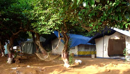 Koyna Backwater Camp